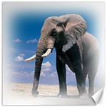 Animals Elephants Lonely But Strong Canvas 16  x 16