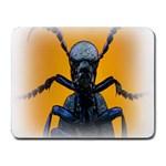 Animal Oil Beetle Small Mousepad