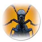 Animal Oil Beetle Magnet 5  (Round)