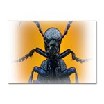 Animal Oil Beetle Sticker A4 (10 pack)