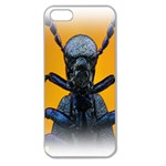 Animal Oil Beetle Apple Seamless iPhone 5 Case (Clear)