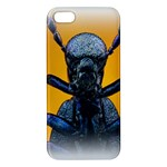 Animal Oil Beetle iPhone 5 Premium Hardshell Case
