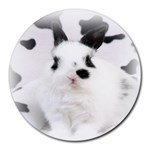 Animals Rabbits Brothers Round Mousepad