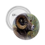 Bighorn Sheep 2.25  Button