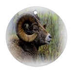 Bighorn Sheep Ornament (Round)