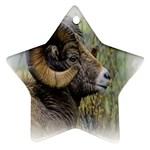Bighorn Sheep Star Ornament (Two Sides)
