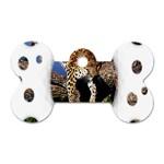 3 Dimention Kingdom Animal King Tree Climber Leopard  Dog Tag Bone (One Side)