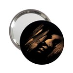 Nosferatu Vampire in His Tomb 2.25  Handbag Mirror