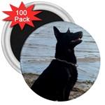 Black German Shepherd 3  Button Magnet (100 pack)