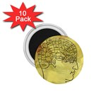 Brain Map 1.75  Button Magnet (10 pack)