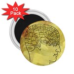 Brain Map 2.25  Button Magnet (10 pack)