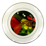 Butterfly Porcelain Plate