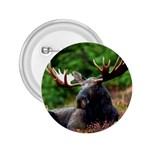 Majestic Moose 2.25  Button