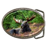 Majestic Moose Belt Buckle (Oval)
