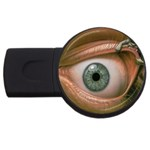 Demon in My Eye Goth Punk Fantasy USB Flash Drive Round (4 GB)