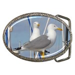 Je 002 116  Jacquei Essex Two Gulls At Rest Belt Buckle