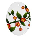 Flower Branch Nature Leaves Plant Oval Ornament (Two Sides)