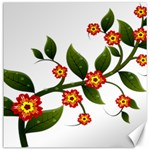 Flower Branch Nature Leaves Plant Canvas 20  x 20