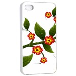 Flower Branch Nature Leaves Plant Apple iPhone 4/4s Seamless Case (White)
