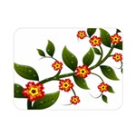 Flower Branch Nature Leaves Plant Double Sided Flano Blanket (Mini)