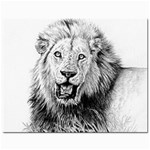 Lion Wildlife Art And Illustration Pencil Jewelry Bags