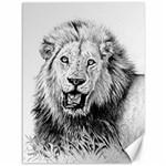 Lion Wildlife Art And Illustration Pencil Canvas 36  x 48