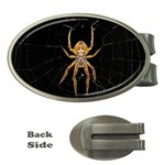 Insect Macro Spider Colombia Money Clips (Oval)