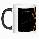 Insect Macro Spider Colombia Morph Mugs