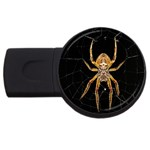 Insect Macro Spider Colombia USB Flash Drive Round (4 GB)