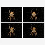 Insect Macro Spider Colombia Belt Buckles