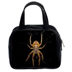 Insect Macro Spider Colombia Classic Handbags (2 Sides)