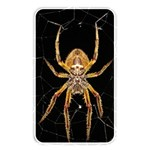 Insect Macro Spider Colombia Memory Card Reader