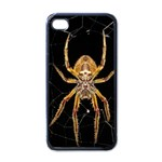 Insect Macro Spider Colombia Apple iPhone 4 Case (Black)