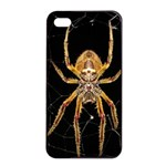 Insect Macro Spider Colombia Apple iPhone 4/4s Seamless Case (Black)