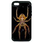Insect Macro Spider Colombia Apple iPhone 5 Hardshell Case (PC+Silicone)