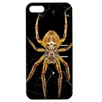 Insect Macro Spider Colombia Apple iPhone 5 Hardshell Case with Stand