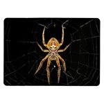 Insect Macro Spider Colombia Samsung Galaxy Tab 10.1  P7500 Flip Case