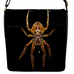 Insect Macro Spider Colombia Flap Messenger Bag (S)