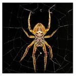 Insect Macro Spider Colombia Large Satin Scarf (Square)