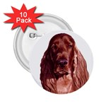 Irish Setter ^ 2.25  Button (10 pack)