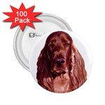 Irish Setter ^ 2.25  Button (100 pack)
