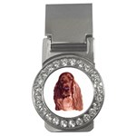 Irish Setter ^ Money Clip (CZ)