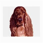 Irish Setter ^ Glasses Cloth (Small