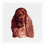 Irish Setter ^ Glasses Cloth (Medium