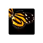butterfly-pop-art-print-11 Magnet (Square)