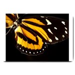 butterfly-pop-art-print-11 Large Doormat