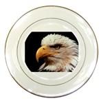 www_pics_am-birds133 Porcelain Plate