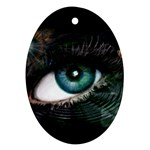 eye-538468 Oval Ornament (Two Sides)