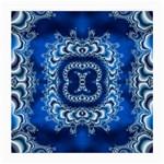 bluerings-185954 Glasses Cloth (Medium)