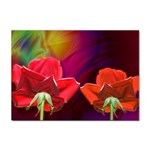 2_Shiny_Roses-77215 Sticker A4 (10 pack)